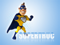 Supertruc : la rédaction et le netlinking